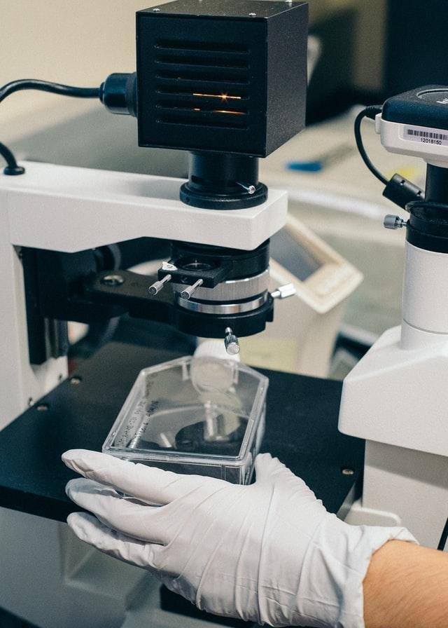 Urychlení regenerace svalové tkáně